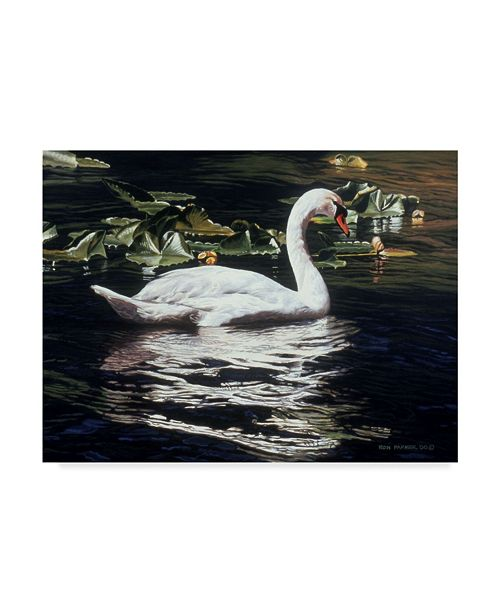 """Trademark Global Ron Parker 'Mute Swan And Lily Pads' Canvas Art - 35"""" x 47"""""""