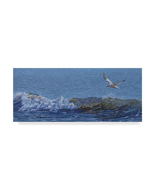 "Trademark Global Rusty Frentner 'Sailing' Canvas Art - 8"" x 19"""