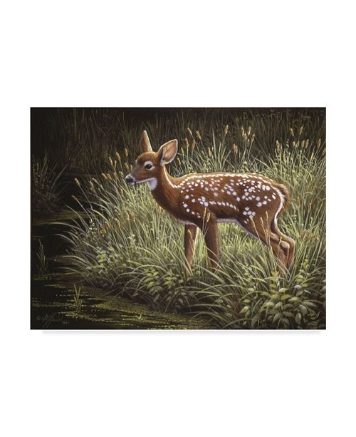 "Trademark Global Wilhelm Goebel 'In The Tall Grass' Canvas Art - 35"" x 47"""