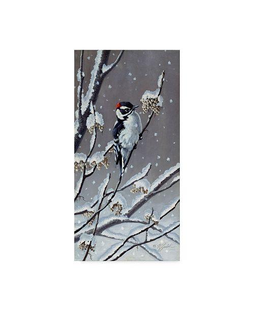 """Trademark Global Wilhelm Goebel 'Winter Berries' Canvas Art - 24"""" x 47"""""""