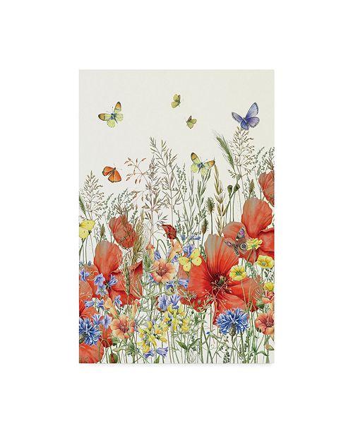 "Trademark Global Janneke Brinkman-Salentijn 'Poppies And Grasses' Canvas Art - 30"" x 47"""