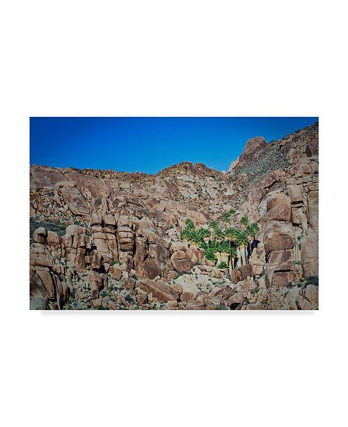 "Trademark Global Janice Sullivan 'Desert Oasis Canyon' Canvas Art - 47"" x 30"""