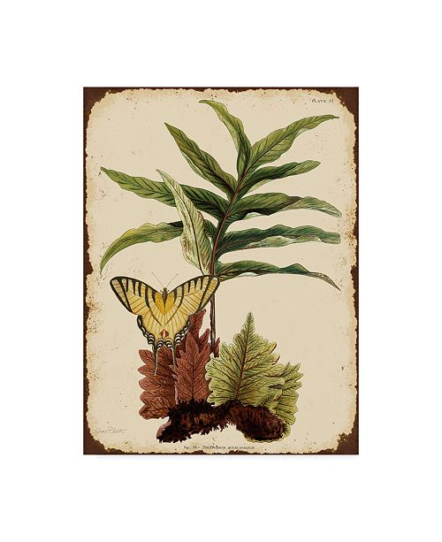 "Trademark Global Jean Plout 'Ferns On Vintage Tin' Canvas Art - 35"" x 47"""