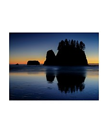 "Michael Blanchette Photography 'Beach Afterglow' Canvas Art - 47"" x 35"""