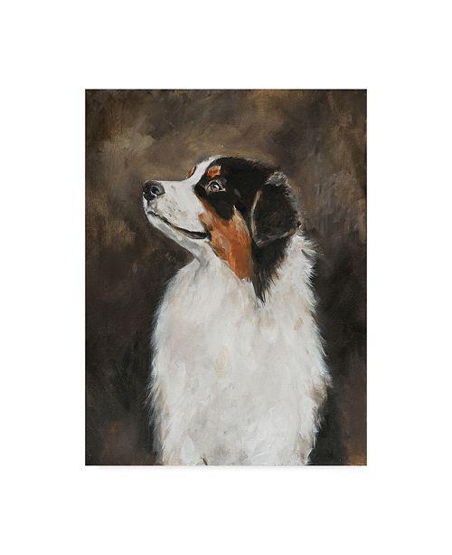 "Trademark Global Solveiga 'Australian Shepherd Abstract' Canvas Art - 24"" x 32"""