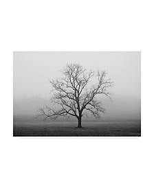 "Nicholas Bell Photography 'Velvet Sunrise' Canvas Art - 47"" x 30"""