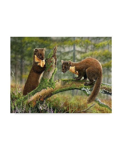 "Trademark Global Nigel Artingstall 'Pine Martens' Canvas Art - 47"" x 35"""
