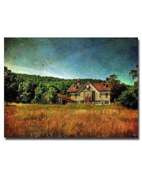 "Trademark Global Lois Bryan 'Old Barn in Golden Light' Canvas Art - 47"" x 30"""