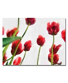 """Michelle Calkins 'Red Tulips from Bottom Up II' Canvas Art - 24"""" x 18"""""""