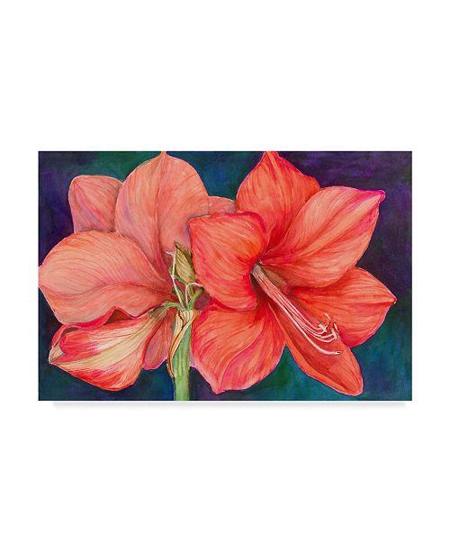"Trademark Global Joanne Porter 'Amaryllis Blooms' Canvas Art - 12"" x 19"""
