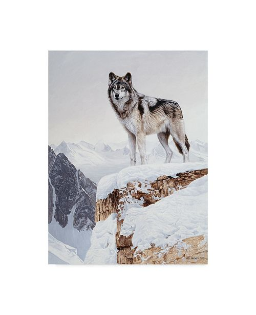 "Trademark Global Ron Parker 'Snow Bound' Canvas Art - 14"" x 19"""