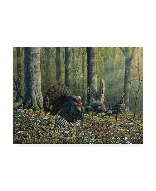 """Trademark Global Wilhelm Goebel 'Spring Beauties' Canvas Art - 14"""" x 19"""""""