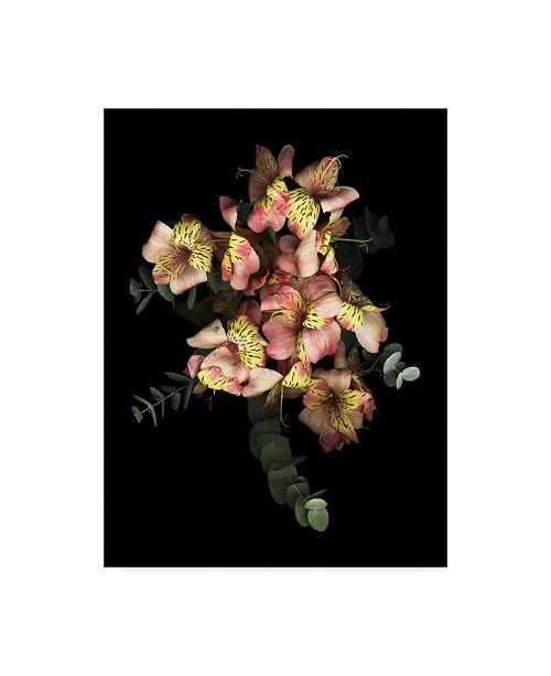 "Trademark Global Susan S. Barmon 'Eucalyptus And Alstromeria' Canvas Art - 14"" x 19"""