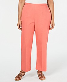 Plus Size Coastal Drive Straight-Leg Pants