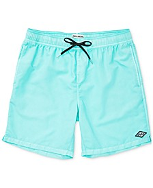 Toddler & Little Boys Swim Trunks