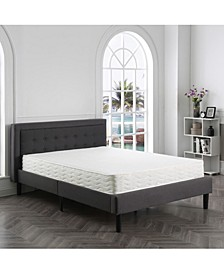 "Ana 8"" Cushion Firm Tight Top Mattress-  California King"