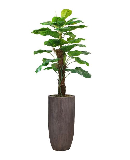"""Laura Ashley 62.25"""" Real Touch Greenery in Resin Planter"""