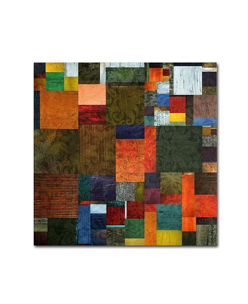 "Trademark Global Michelle Calkins 'Brocade Color Collage 3' Canvas Art - 14"" x 14"""