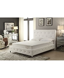 "AC Pacific Soft Aloe Vera Queen 6"" Memory Foam Mattress Cover"