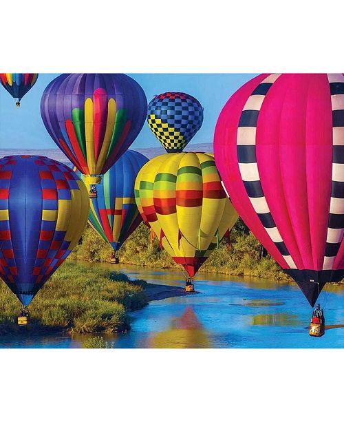 Springbok Puzzles Take Flight 1000 Piece Jigsaw Puzzle
