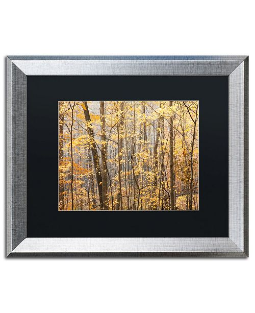 """Trademark Global Jason Shaffer 'Autumn Tree line 2' Matted Framed Art - 20"""" x 16"""""""