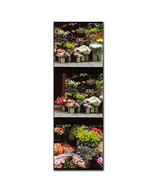 "Trademark Global Parisian Flower Stand by Preston Canvas Art - 19"" x 6"""