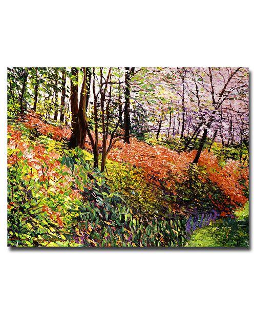 "Trademark Global David Lloyd Glover 'Magic Flower Forest' Canvas Art - 47"" x 35"""