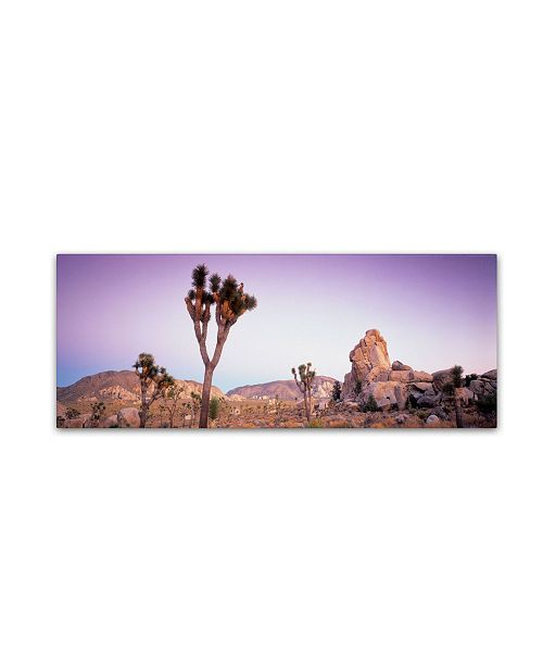 "Trademark Global David Evans 'Dusk-Joshua Tree NP' Canvas Art - 47"" x 16"""