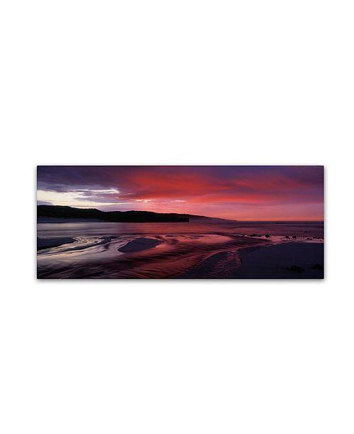 "Trademark Global David Evans 'Hanson Bay-Kangaroo Island' Canvas Art - 47"" x 16"""