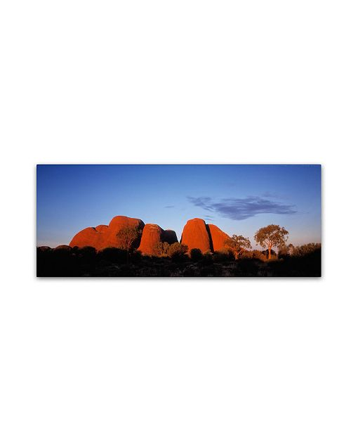 "Trademark Global David Evans 'Kata Tjuta' Canvas Art - 19"" x 6"""
