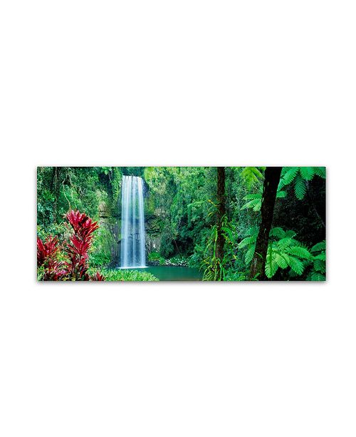 "Trademark Global David Evans 'Milla Milla Falls' Canvas Art - 19"" x 6"""