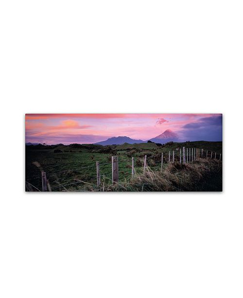 "Trademark Global David Evans 'Mt Taranaki-NZ' Canvas Art - 24"" x 8"""