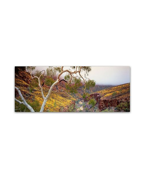 "Trademark Global David Evans 'Ormiston Gorge-NT' Canvas Art - 24"" x 8"""
