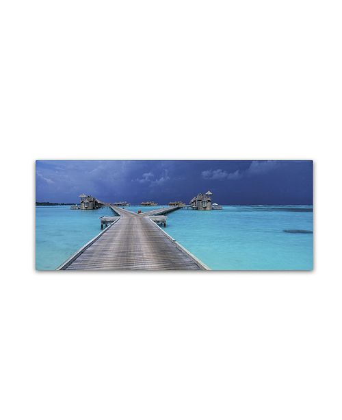 "Trademark Global David Evans 'Tropical Storm-Maldives' Canvas Art - 8"" x 24"""