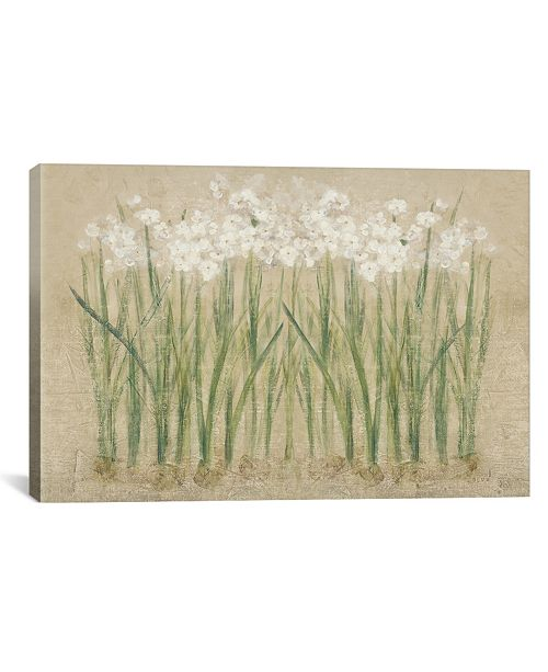 """iCanvas Narcissus Cool by Cheri Blum Gallery-Wrapped Canvas Print - 18"""" x 26"""" x 0.75"""""""