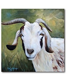Susan's Goat Bill Gallery-Wrapped Canvas Wall Art Collection