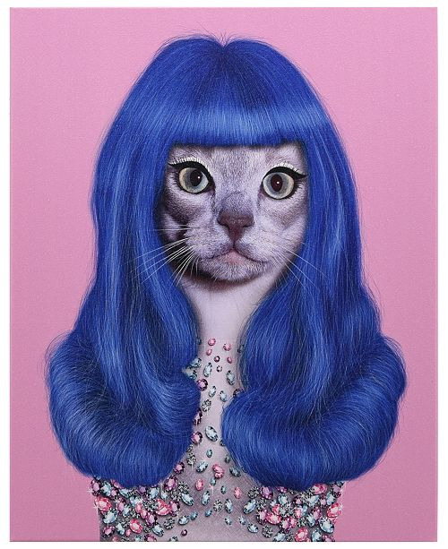 Empire Art Direct Pets Rock 'Gurl' Graphic Art on Wrapped Canvas Wall Art - 20'' x 16''