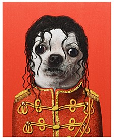 Pets Rock 'Pop' Graphic Art on Wrapped Canvas Wall Art - 20'' x 16''