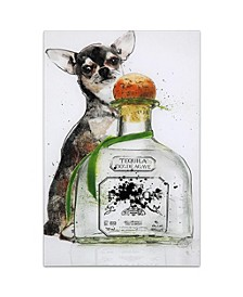 """'Viva Mexico' Frameless Free Floating Tempered Glass Panel Graphic Wall Art - 24"""" x 16''"""