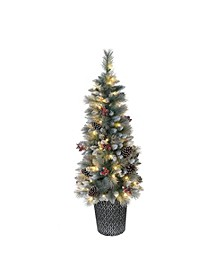 International 4.5 ft. Pre-Lit Potted Sterling Pine Tree with 70 UL-Listed Clear Lights