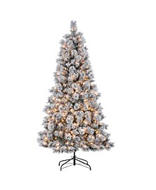 6.5-Foot High Flocked Pre-Lit Hard Mixed Needle Boise Pine with Warm White Lights