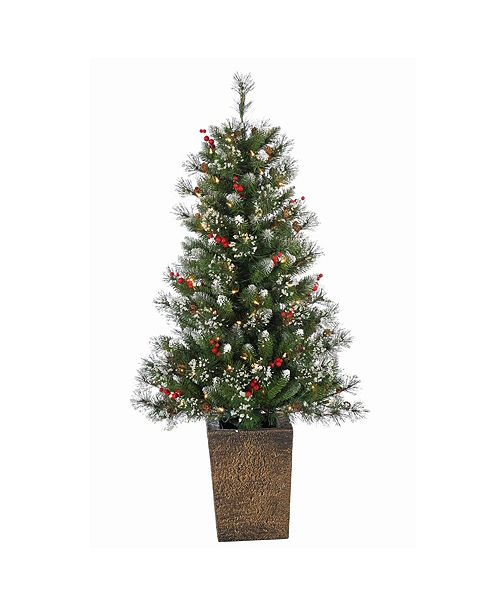 Sterling 4Ft. Pre-Lit Potted Hard Mixed Needle Glazier Pine with 100 Clear Lights