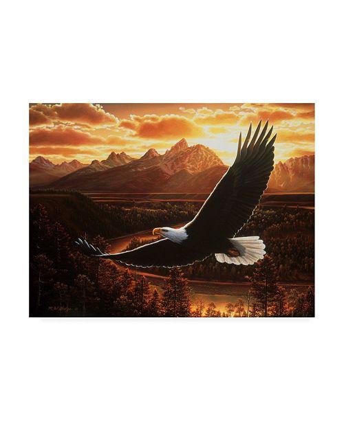 "Trademark Global R W Hedge Evening Cruise Canvas Art - 27"" x 33.5"""