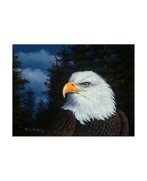 """Trademark Global R W Hedge The Face of Freedom Canvas Art - 15.5"""" x 21"""""""