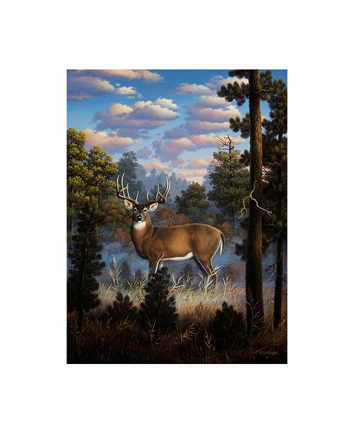"""Trademark Global R W Hedge Morning Light White Tail Canvas Art - 27"""" x 33.5"""""""