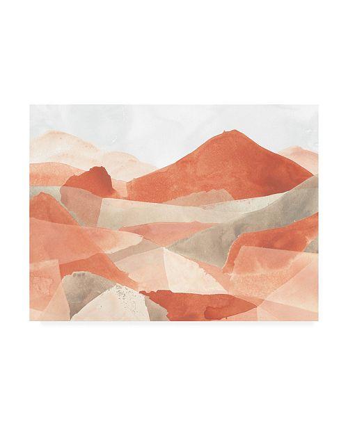"""Trademark Global June Erica Vess Desert Valley III Canvas Art - 27"""" x 33.5"""""""