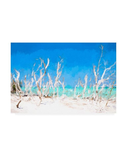 """Trademark Global Philippe Hugonnard White Forest Lining Canvas Art - 36.5"""" x 48"""""""
