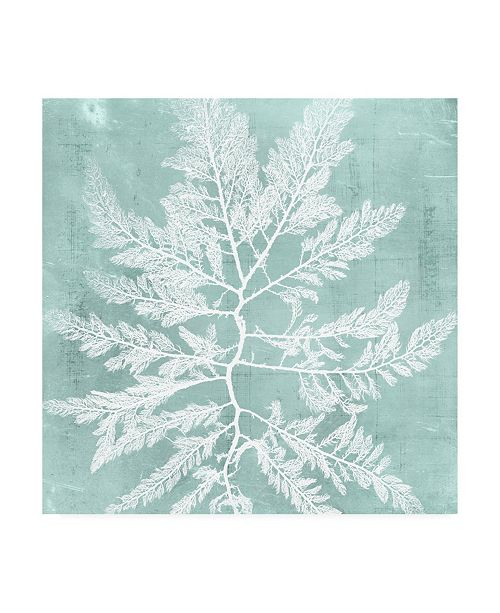 "Trademark Global Vision Studio Seaweed on Aqua I Canvas Art - 15.5"" x 21"""