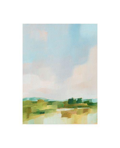 "Trademark Global Ethan Harper Spring Skies I Canvas Art - 36.5"" x 48"""