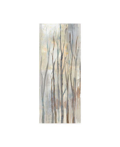 "Trademark Global Jennifer Goldberger Wispy Birches II Canvas Art - 36.5"" x 48"""